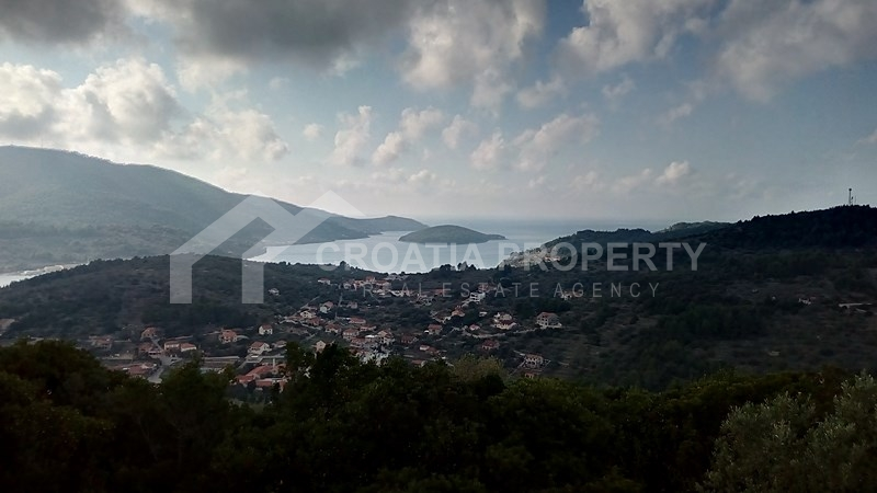 oliveyard plot for saleKorcula island (8)