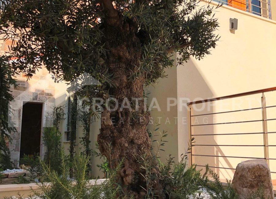 Sibenik apartment - 1710 - photo (15)