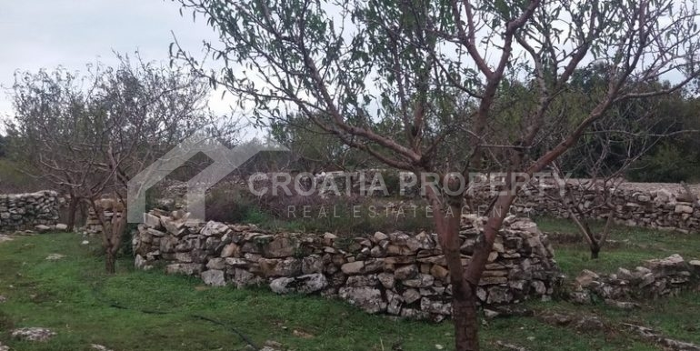 plot for sale brac (7)