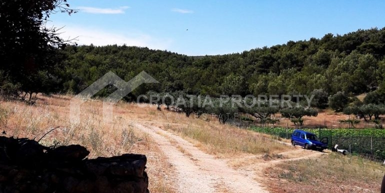 land for sale Sutivan (2)