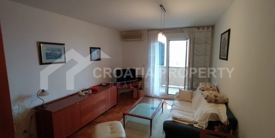 A spacious apartment Pazdigrad