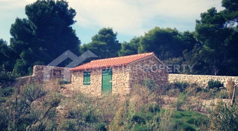Milna house - 2134 - photo (3)