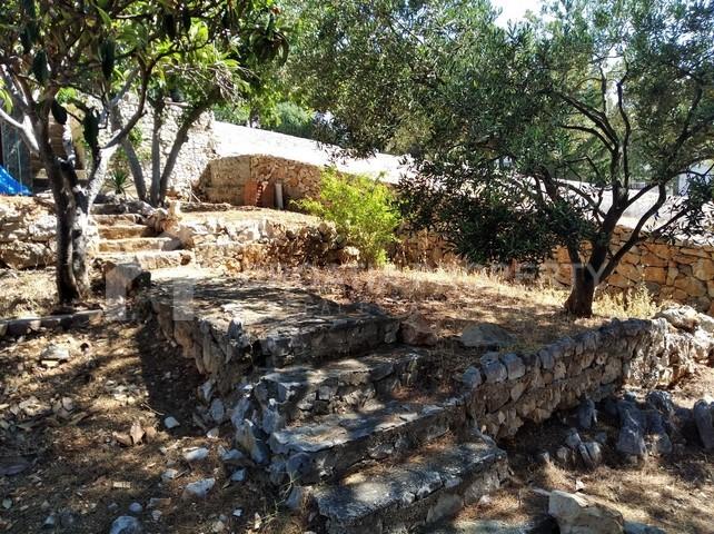 Sevid house - 2241 - photo (6)